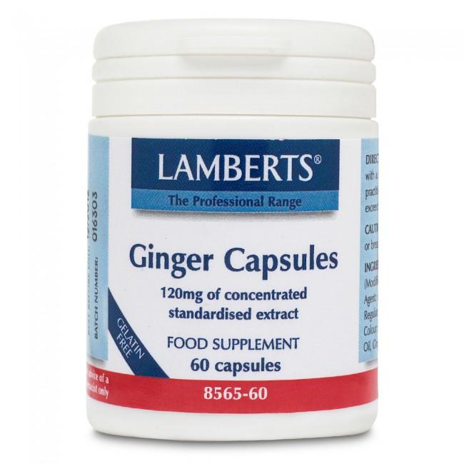 Lamberts Ginger 120mg 60caps