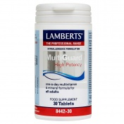 Lamberts Multi Guard One Daily 30tabs