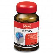 Lanes Mult Memory 30 Tabs