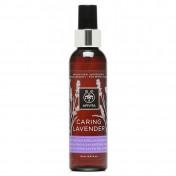 Apivita Caring Lavender Moisturizing & Relaxing Body Oil 150ml
