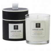 Apivita Natural Candle Royal Honey 235gr